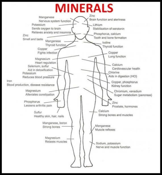 Inner Grounding Minerals