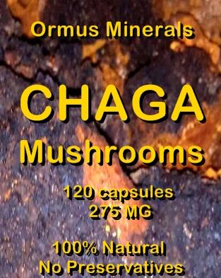 Ormus Minerals Chaga Mushrooms