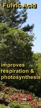 Ormus Minerals - Fulvic Acid improves respiration and photosynthesis