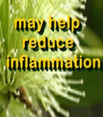 Ormus Minerals Tea Tree Anointing OIl may help reduce inflammation